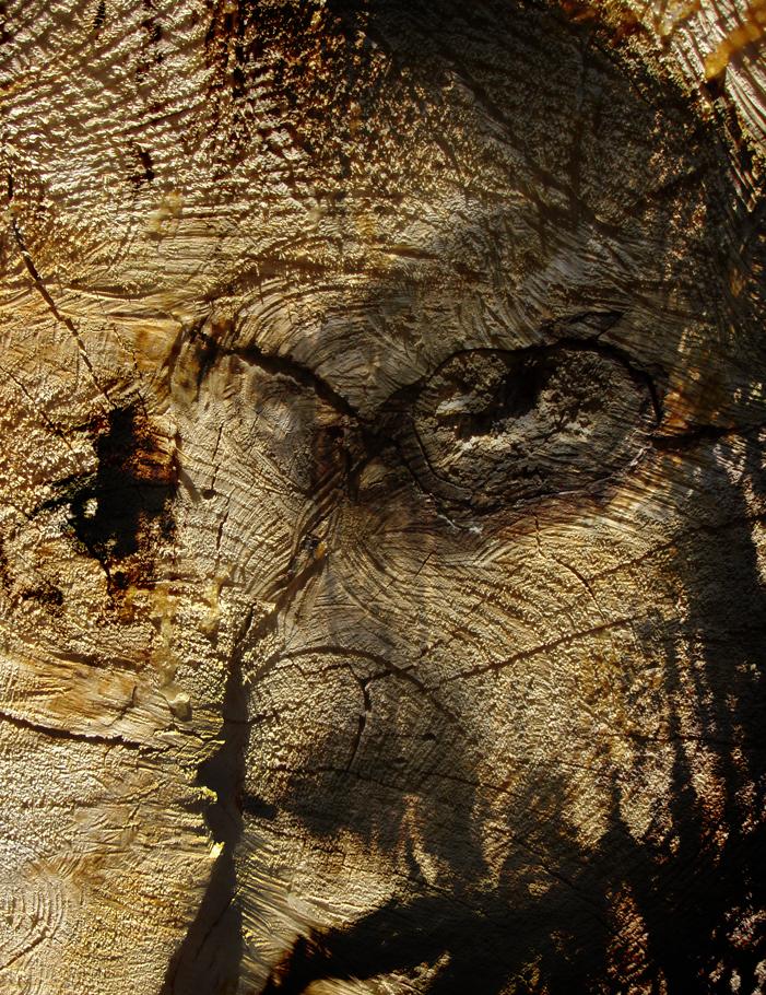 wood21.jpg