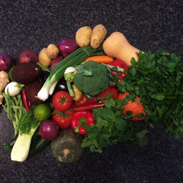 Die Wintermonate sind vorbei, bald gibt es wieder ganz viel frisches, einheimisches Gemüse. Was ist euer Favorit?  #saisonalregional #healthyhabits #gesundessen #lunchclub #zürich #züri #tsüri #vegetarisch #veggies #gemüse #vegetarian #frischgekocht #ohnezusatzstoffe #abwechslungsreich