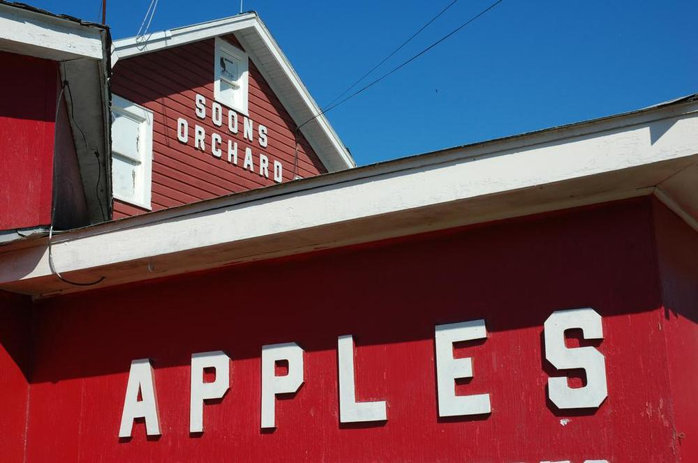 THINGS TO DO: Soon's Orchard in New Hampton, NY