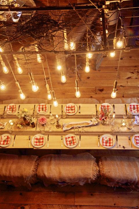 barn-party-lights-0616.jpg