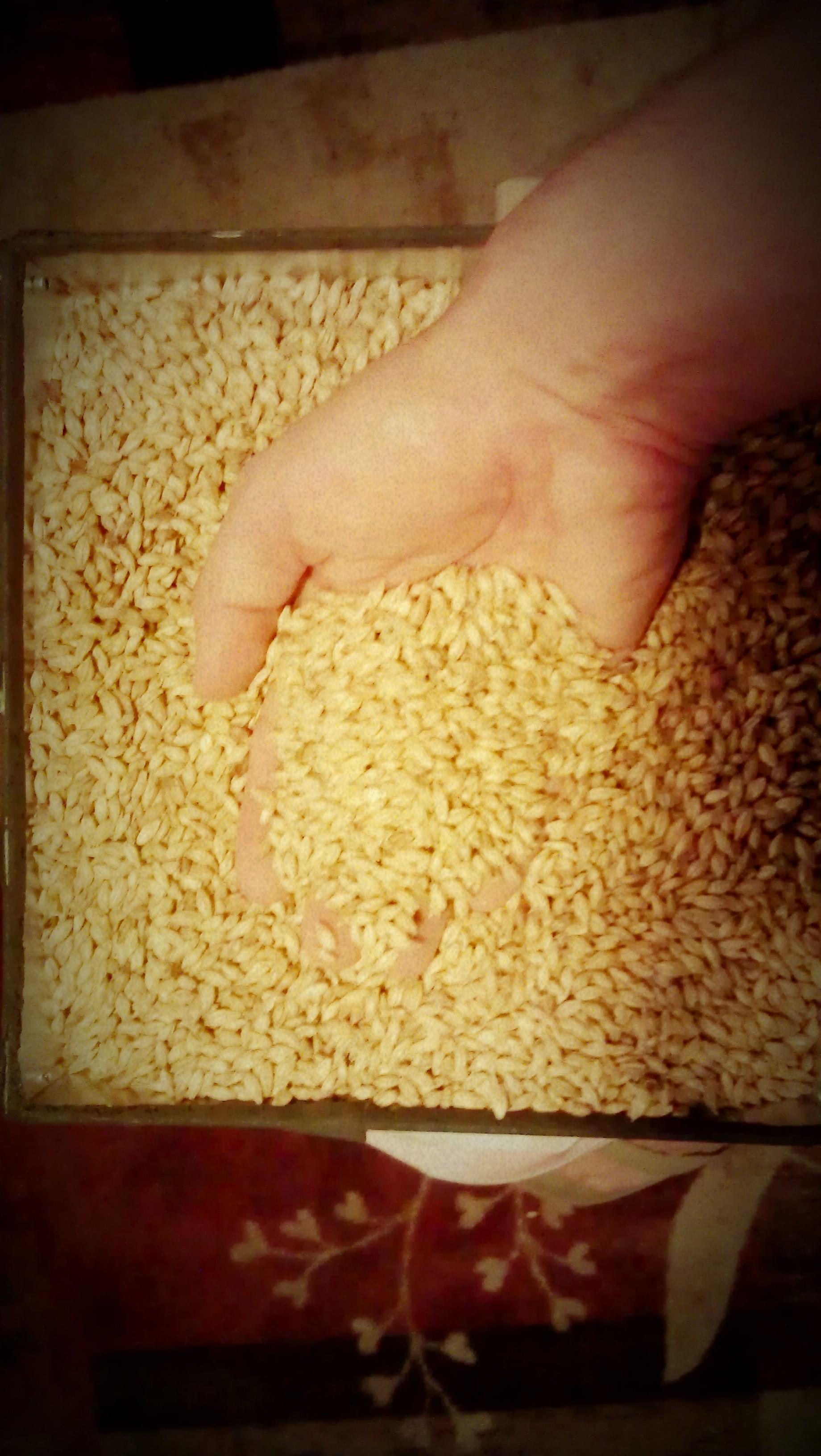 Grains_3