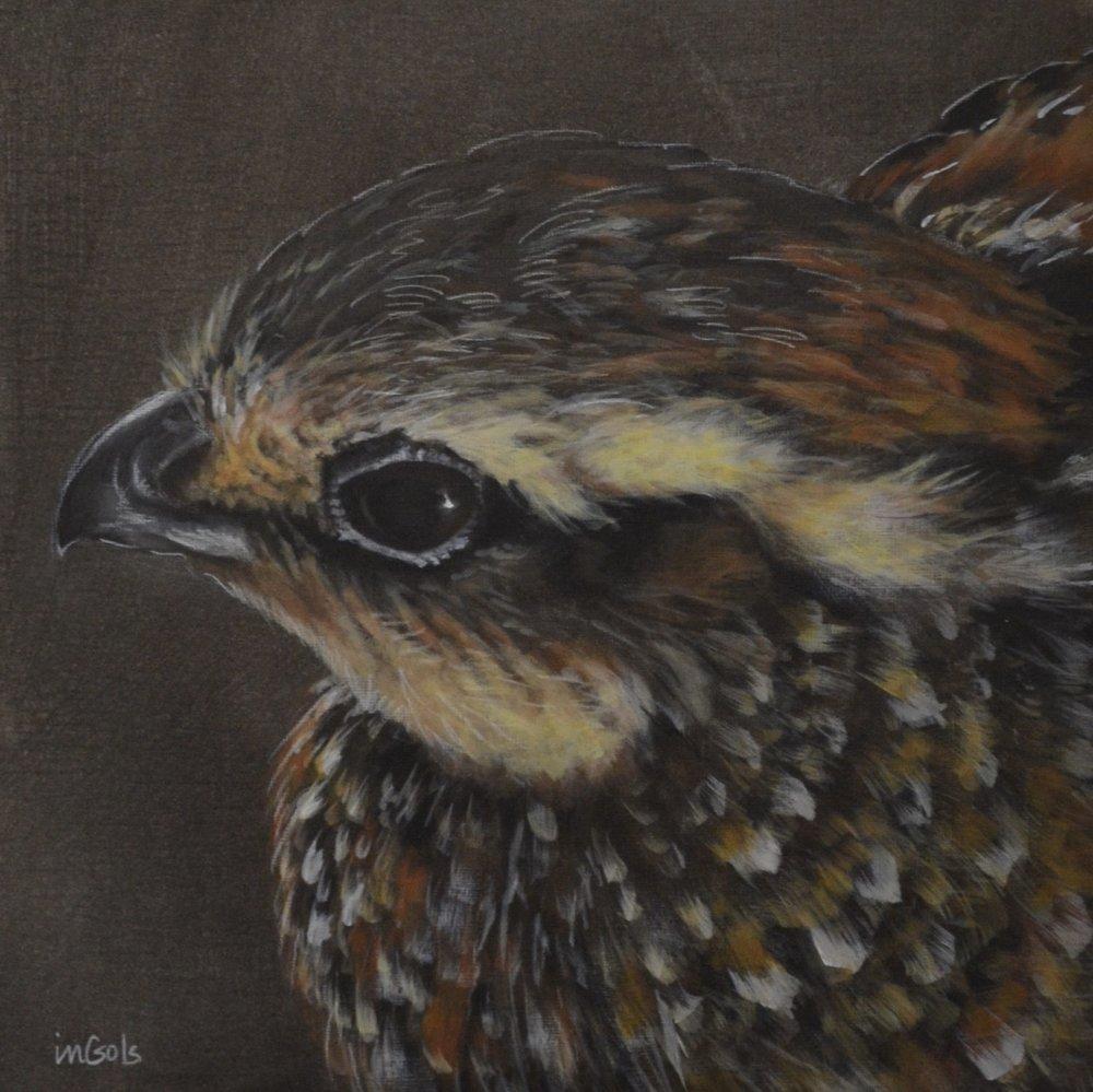 Jane Ingols Art, 12.12