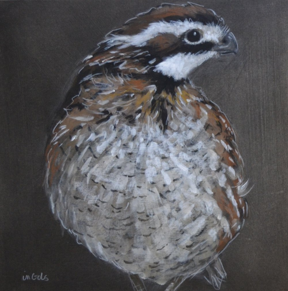 Jane Ingols Art, 12x12