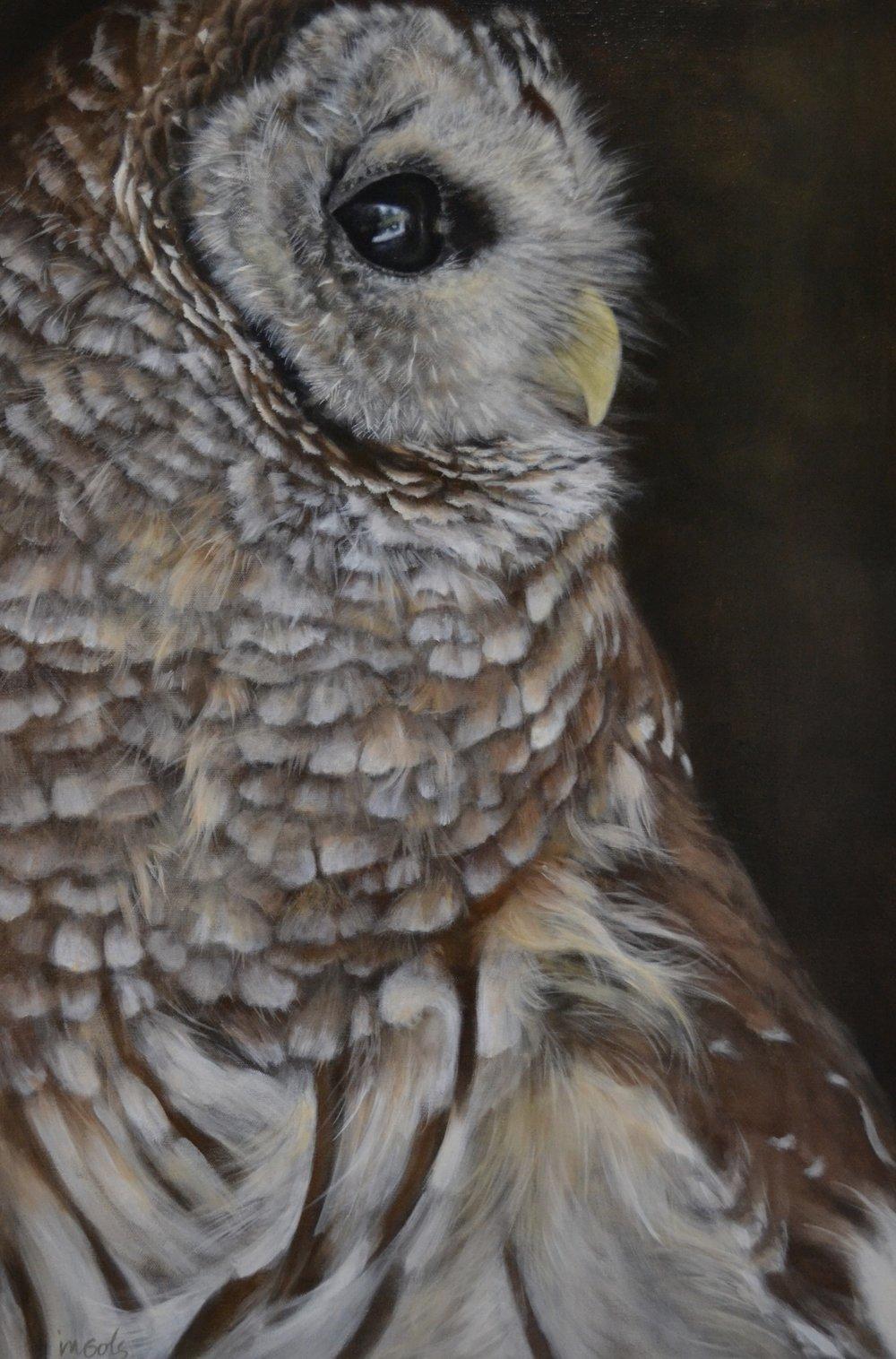 Jane Ingols Art, 30x20