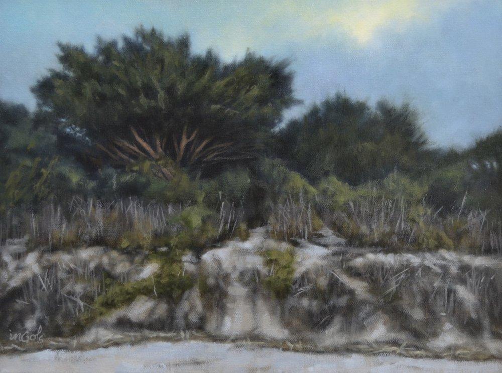 Jane Ingols Art, 12x16