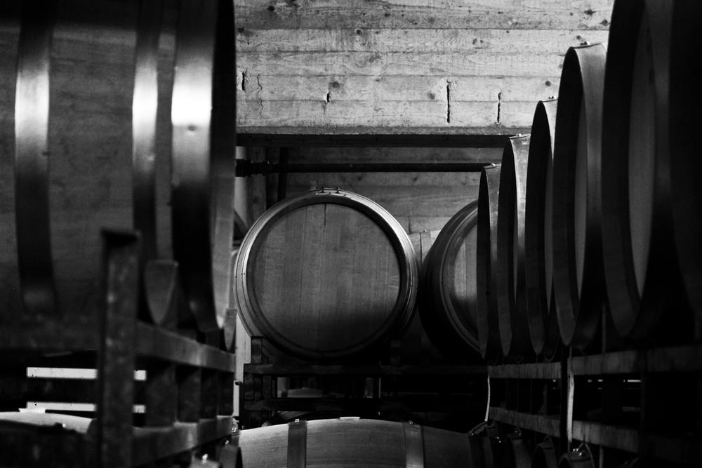 WINE.PLANETA.SICILIA.jpg