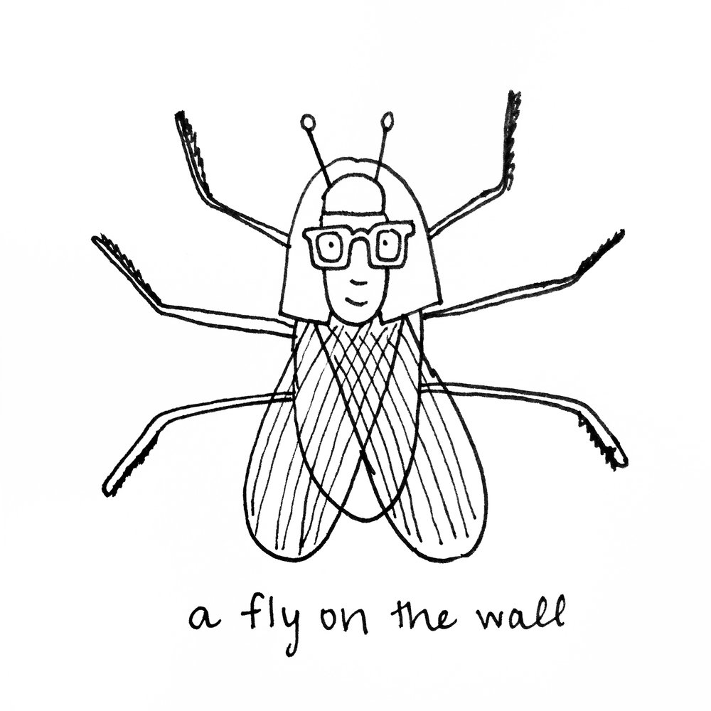 012_lucy-chen-a-fly-on-the-wall.jpg