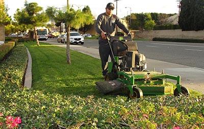 Landscape Maintenance CCB Landscape