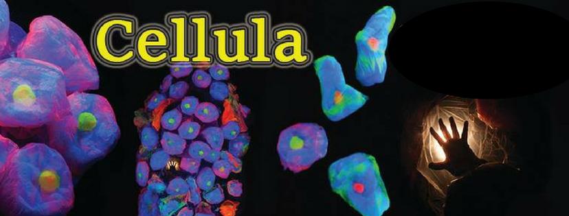 Cellula Web Banner.png