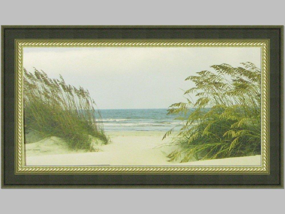 seashore outer banks.JPG