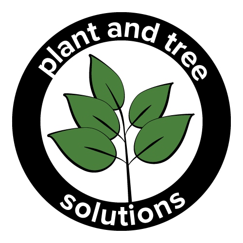 plant and tree solutions