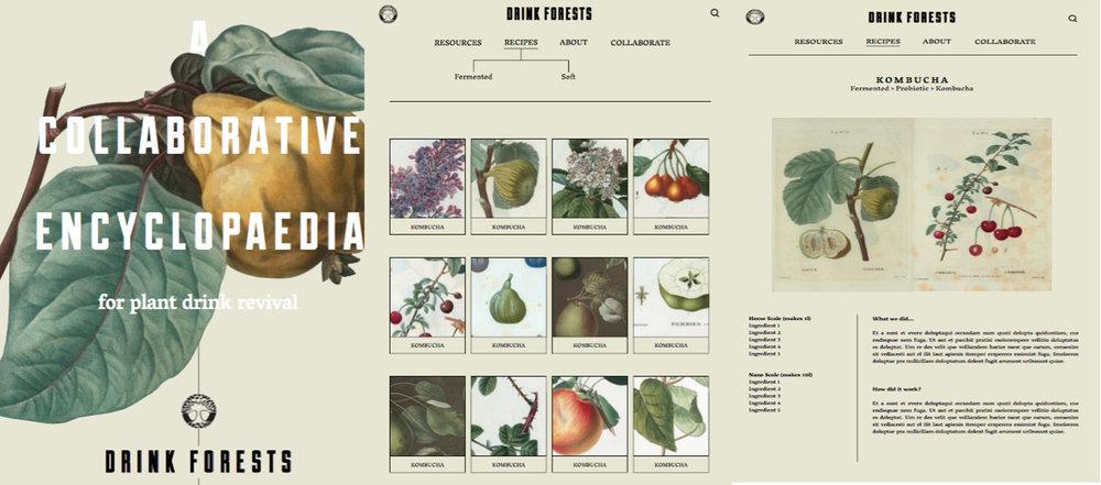 Drink forests for website.jpg