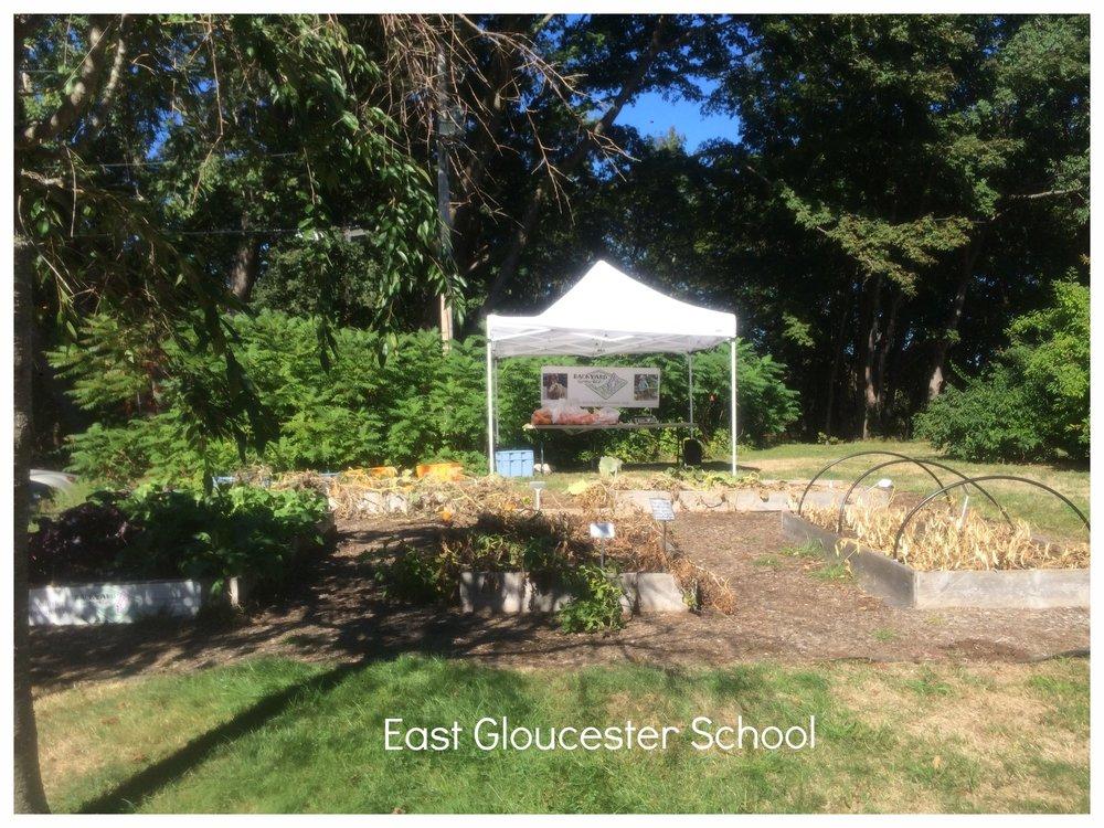 HD 2016 East Gloucester Full Garden Setup.jpeg