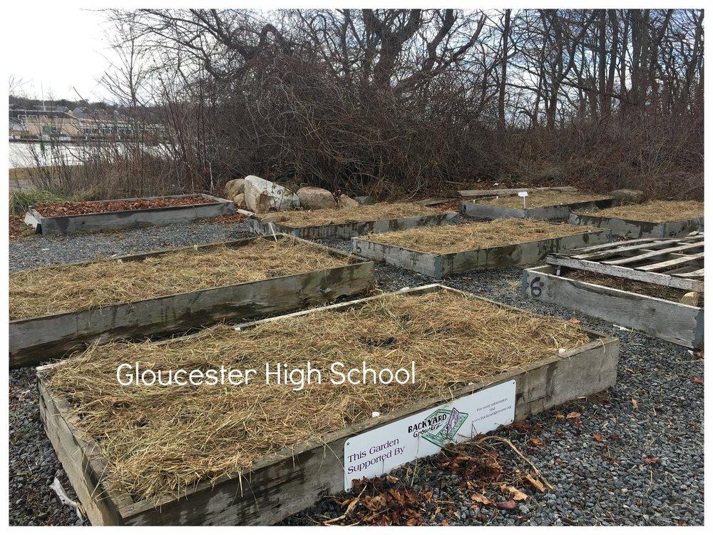 High School Garden Mulched_Dec2016.jpeg