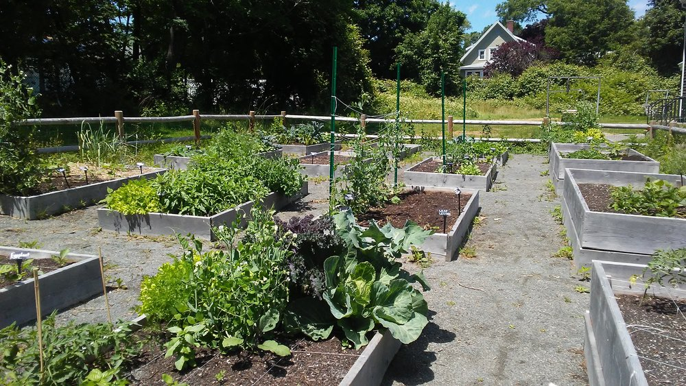 Riverdale Community Garden