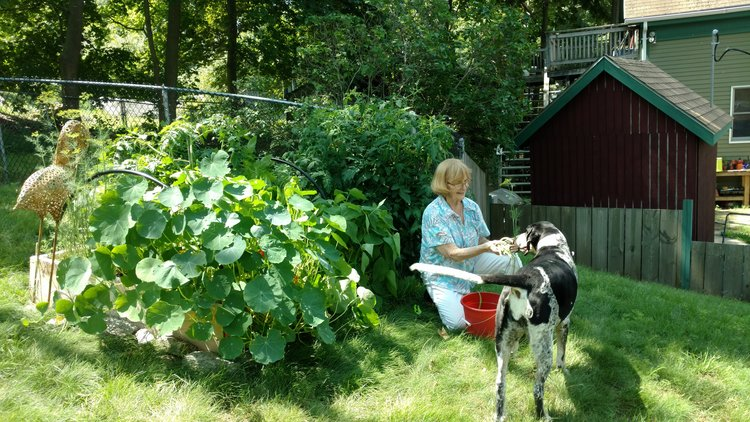 Backyard Growers