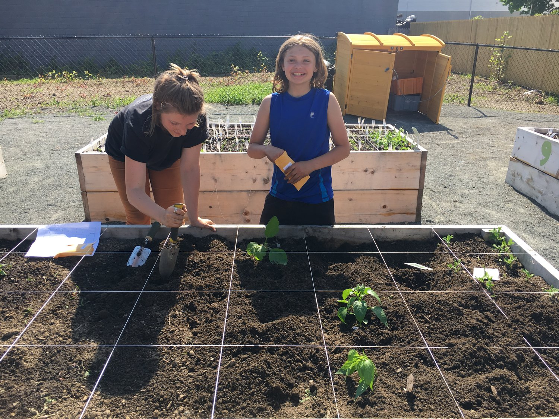 Apply To Be A 2019 Intern Backyard Growers