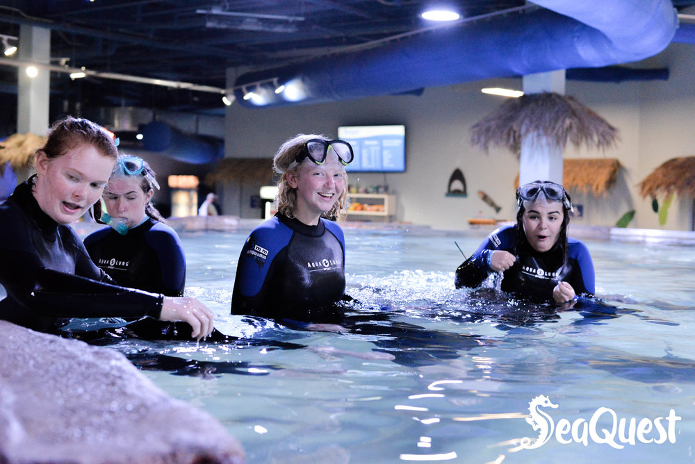 SeaQuest Minnesota