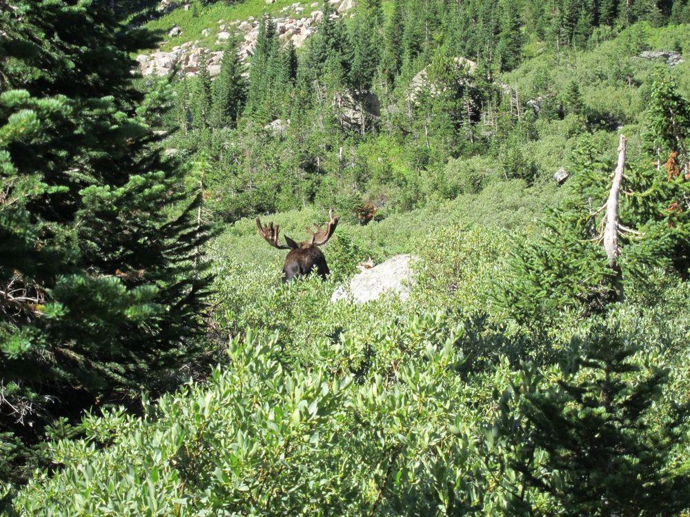 Wyoming - 05.jpg