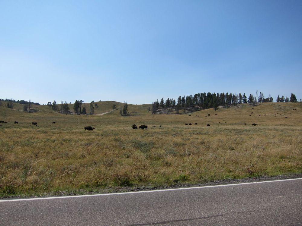 Wyoming - 38.jpg