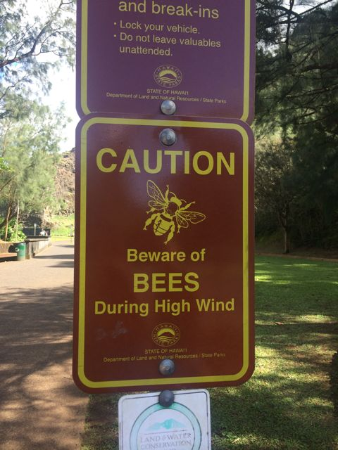 Caution Bees.jpg