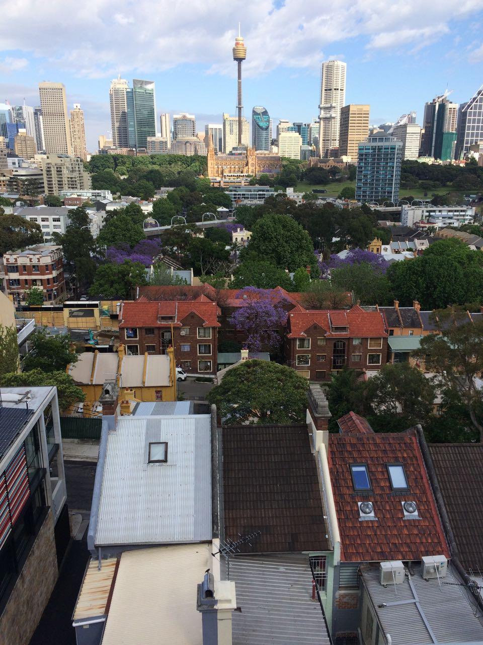 Sydney Vista.jpg
