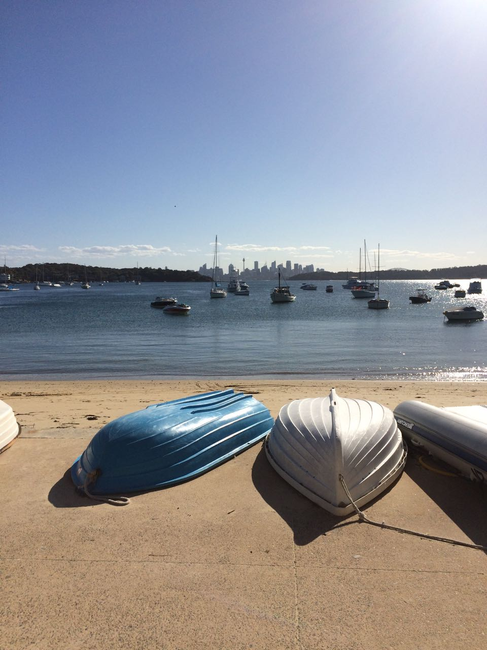 View of Sydney from Watsons Bay.jpg