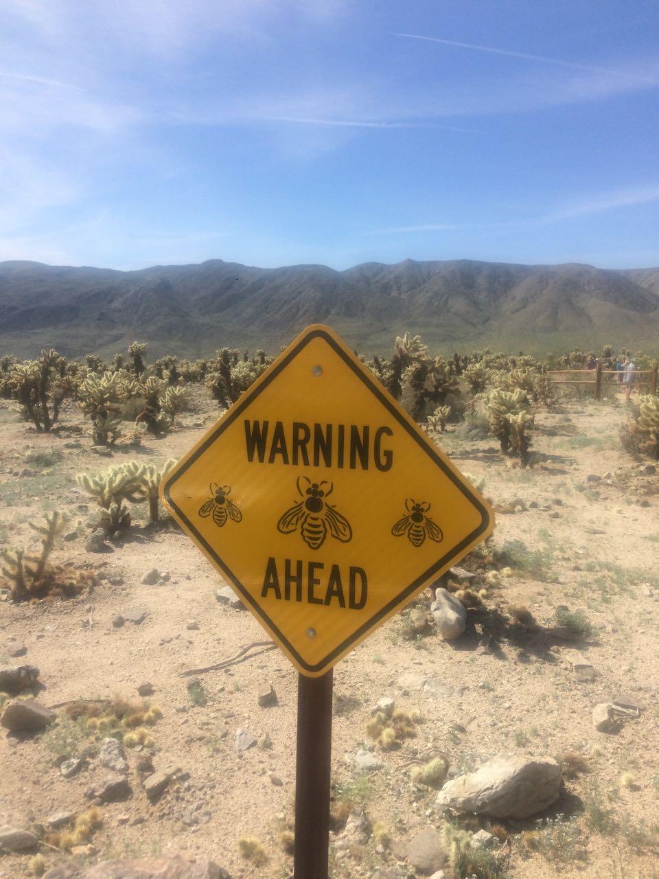 Danger Bees.jpg