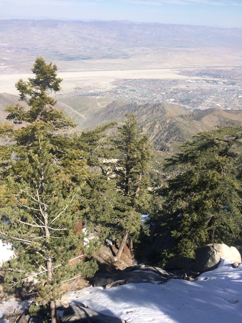 Palm Springs from San Jacinto