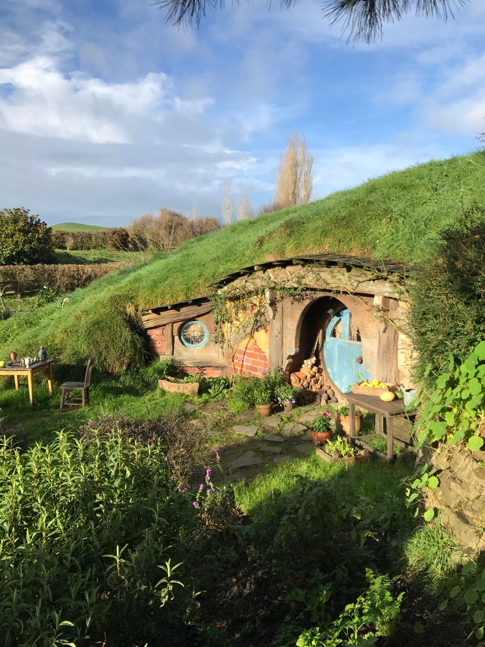 Blue Hobbit Hole.jpg