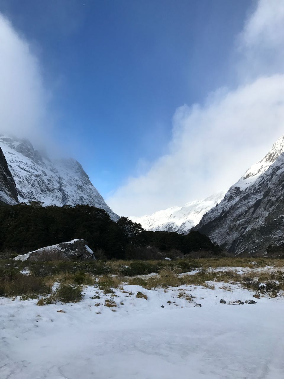 Fiordland mountain views.jpg