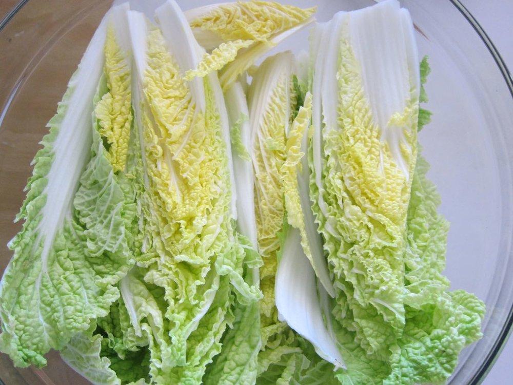 Brining cabbage for kimchi.jpg