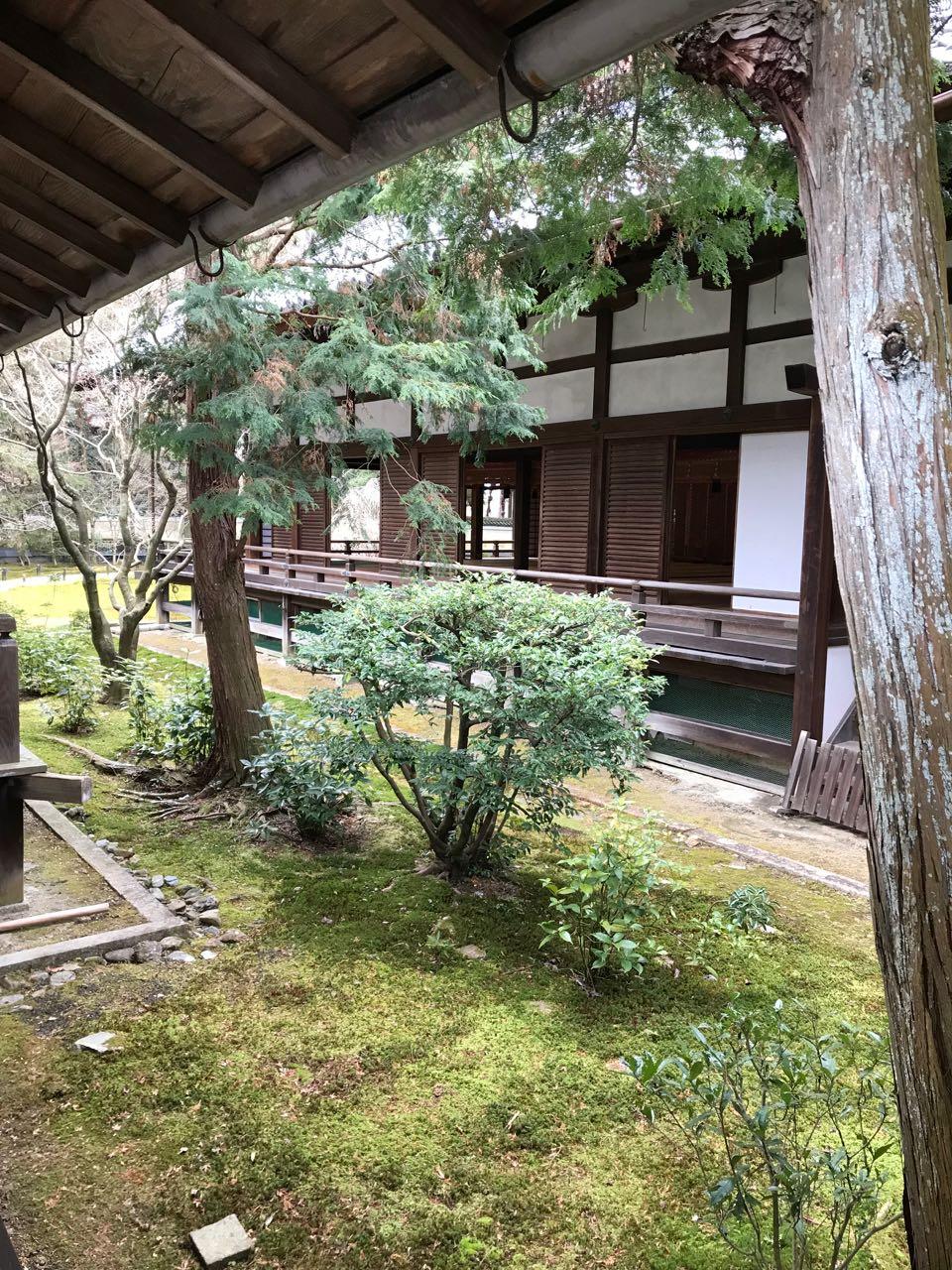 temple house garden.jpg