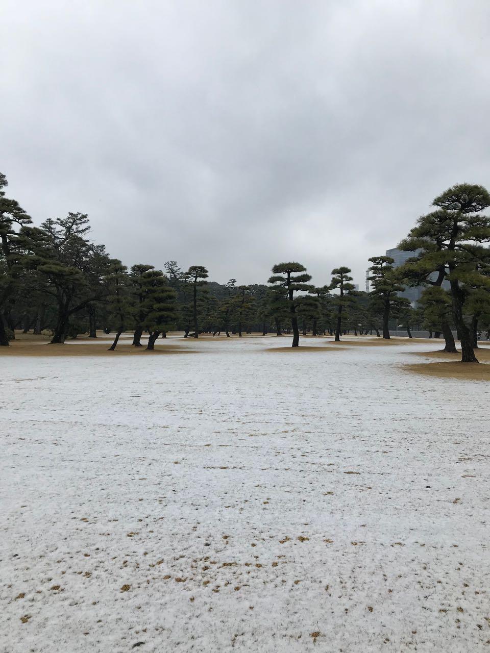 Imperial snow.jpg