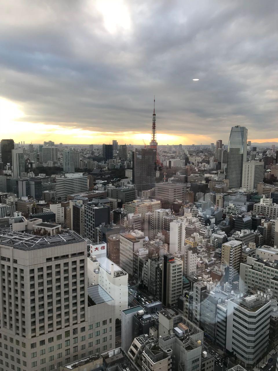 Tokyo view.jpg