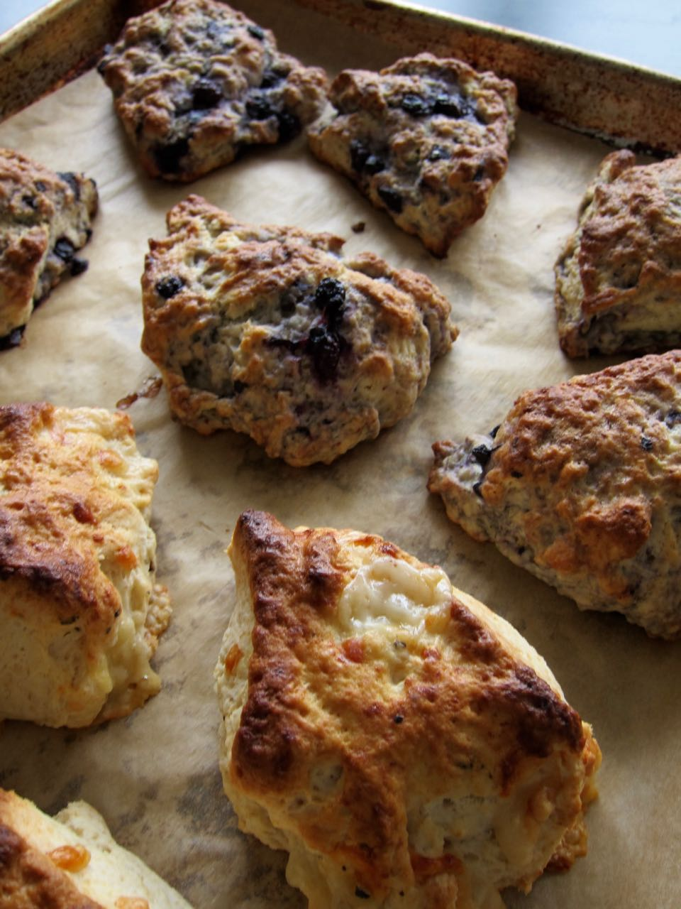 baked lemon blueberry and gruyere pepper scones