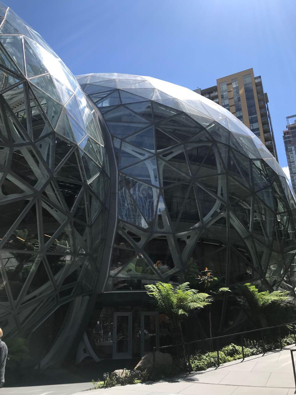 Amazon spheres.jpg