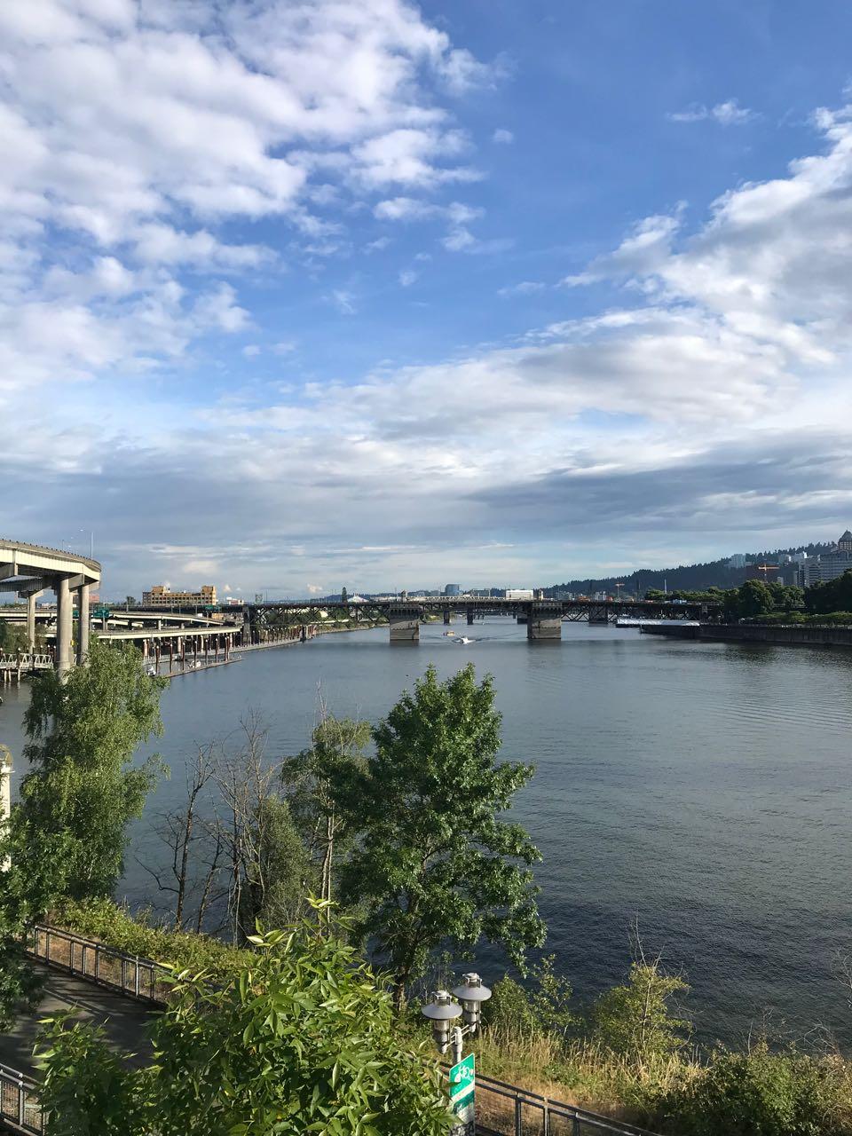 Portland River View 2.jpg