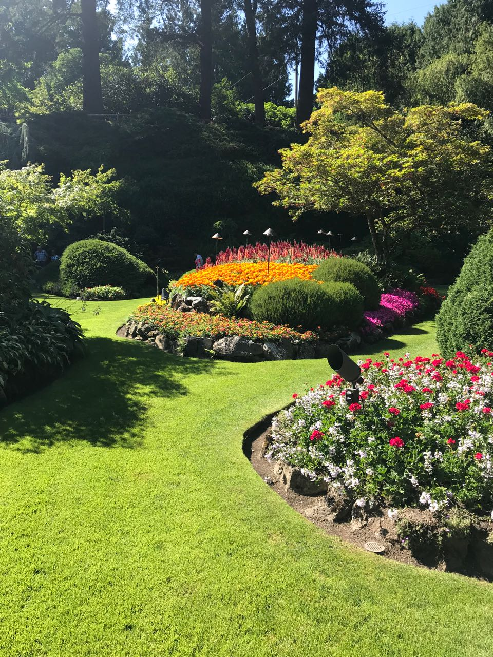 Butchart Garden.jpg