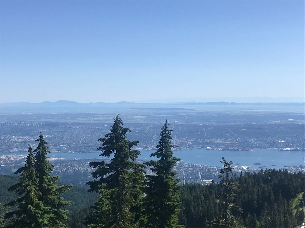 Vancouver from grouse mountain.jpg