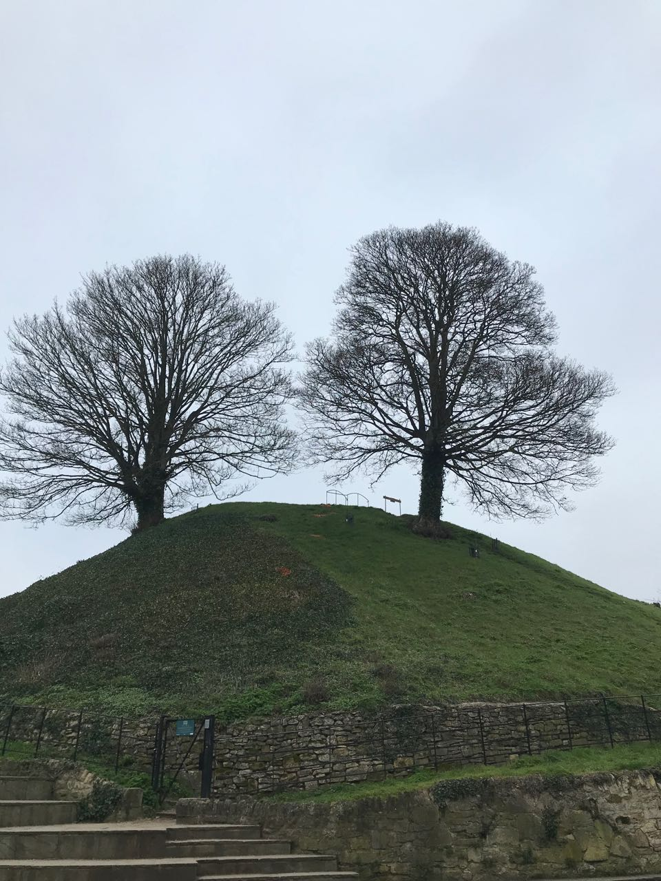 Oxford Castle Hill.jpg