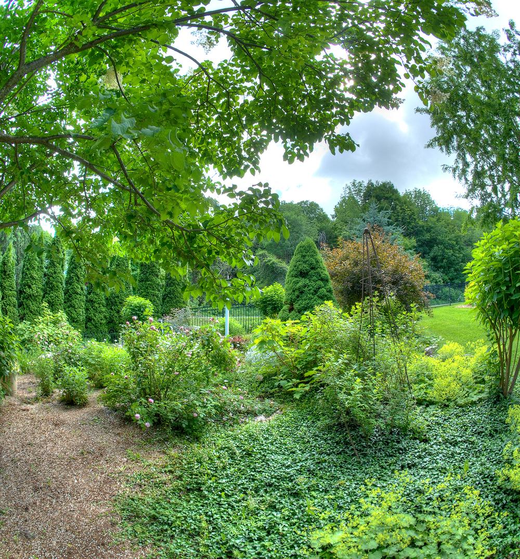 New Garden3.jpg