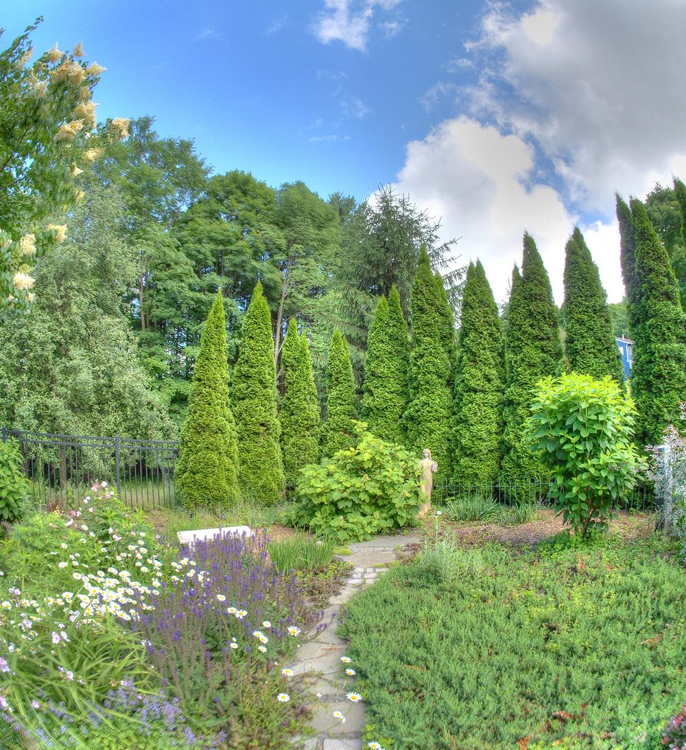 New Garden4.jpg