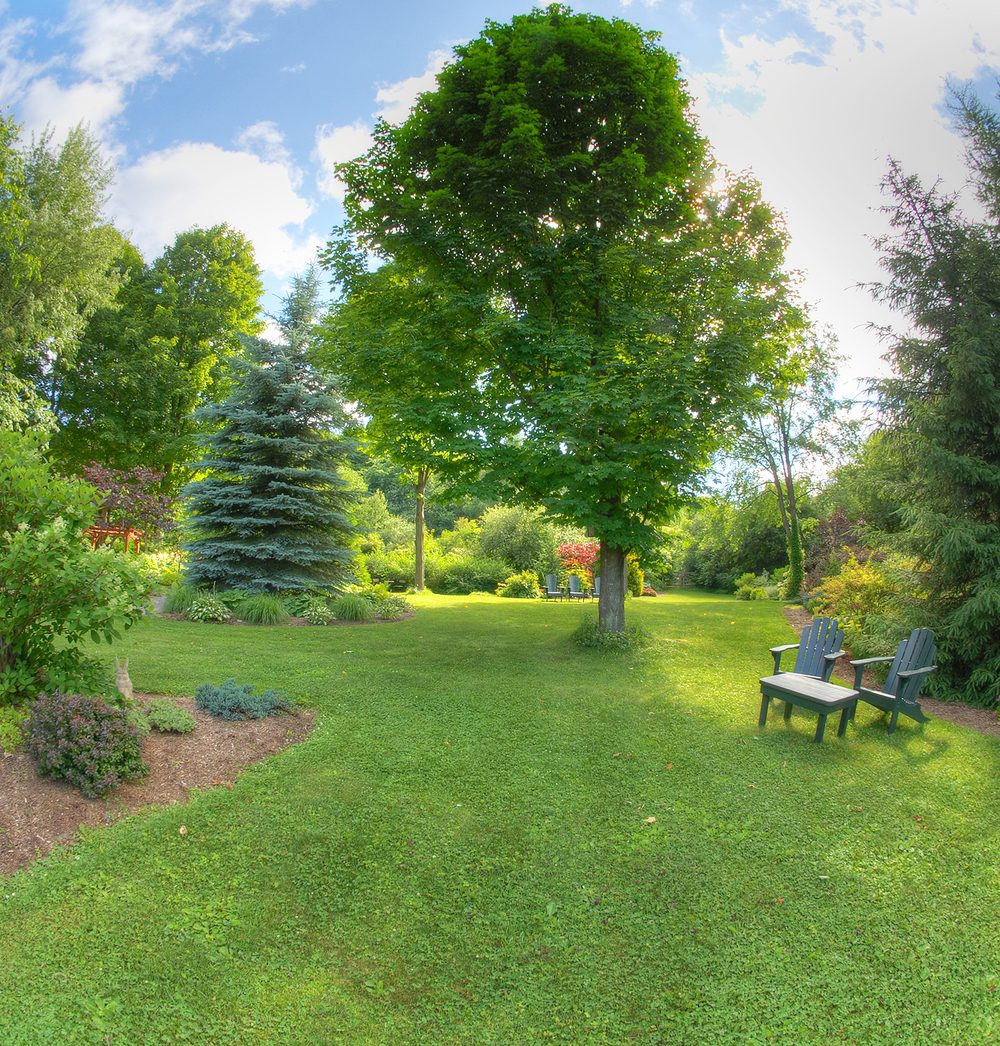 New Garden5.jpg