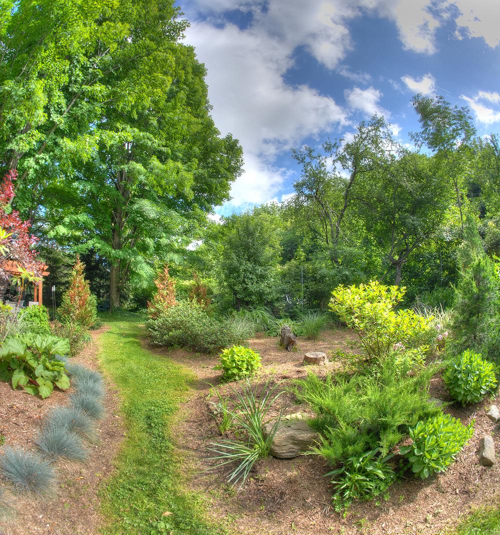 New Garden7.jpg