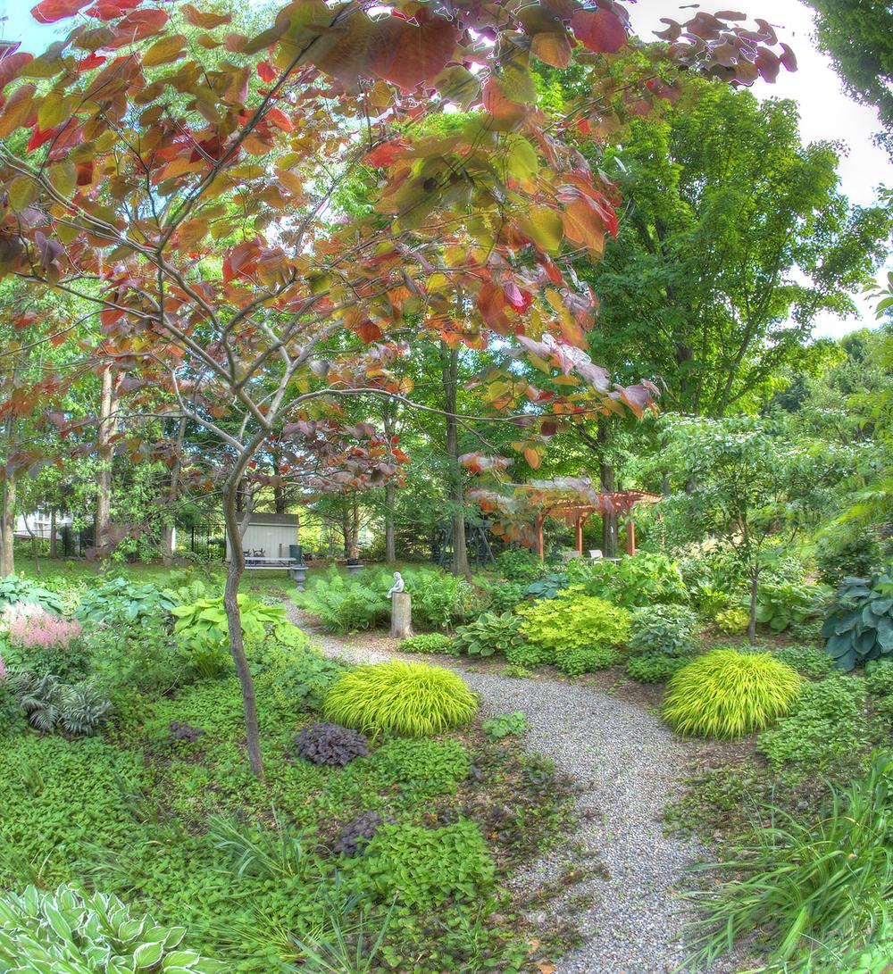 New Garden9.jpg