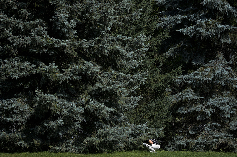 Golfer squats behind the trees to check for the angles at National Capital Open to Support Our Troops at Hylands Golf Club on Friday, Aug. 21, 2015.