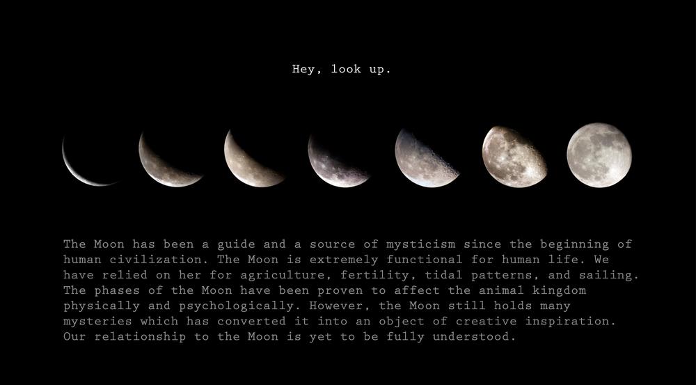 Apollo2.jpg