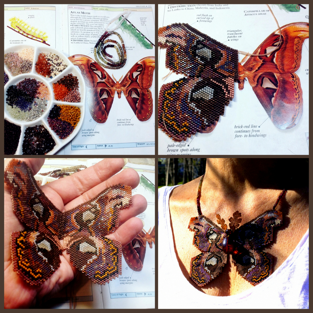 atlas-moth-collage-karin-alisa-houben.JPG