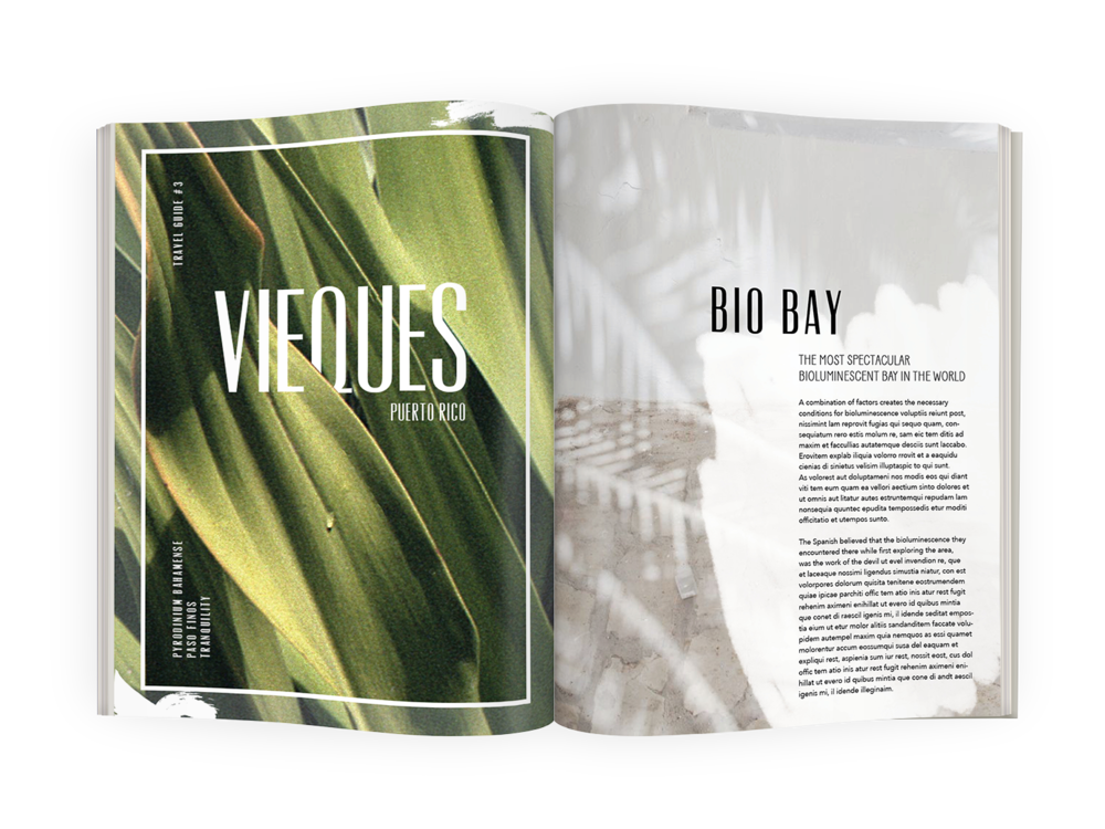 vieques-spread.png